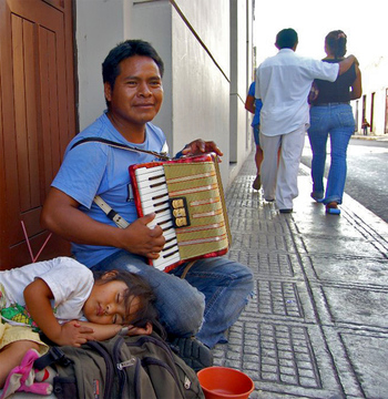 Accordioninmerida