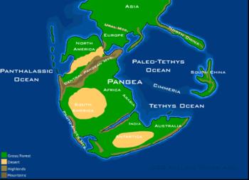 Pangaea_230_million_years_ago